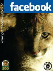 Puminha no Facebook
